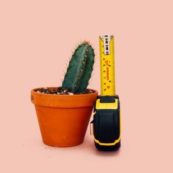 بهترین ابزار اندازهگیری زندگی