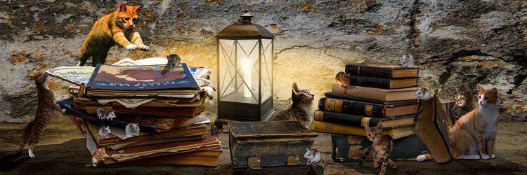 سندرومی مهلک در دنیای کتابخوانی
